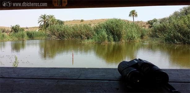 Vista del humedal desde el primer observatorio de aves