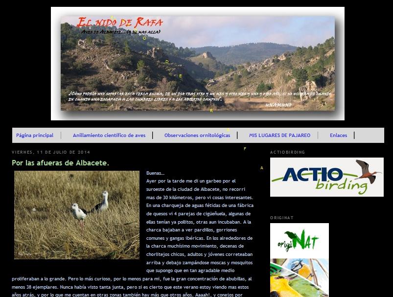 blog de aves elnidoderafa.blogspot.com/