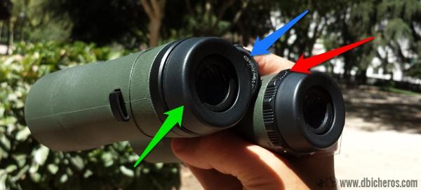 Rueda de enfoque general (azul), Rueda de enfoque individual (roja) y gomas extraibles del ocular (verde) calibrar prismático